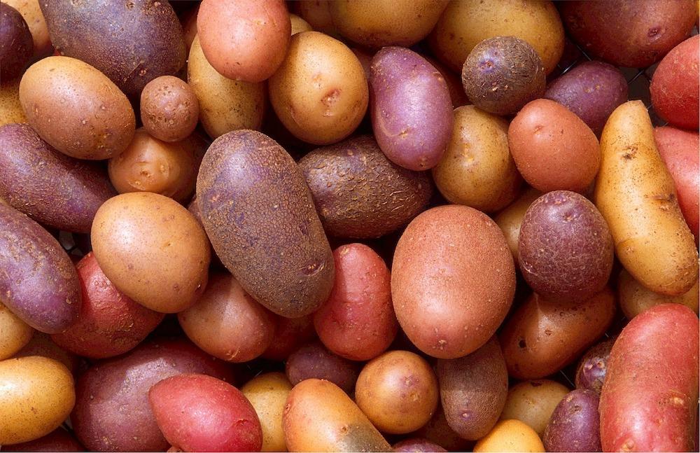more carbs better health potatoes verygoodme.com